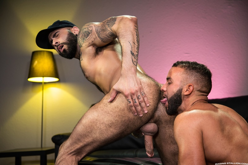 Big Hairy Anal Sex Sex Pictures Pass